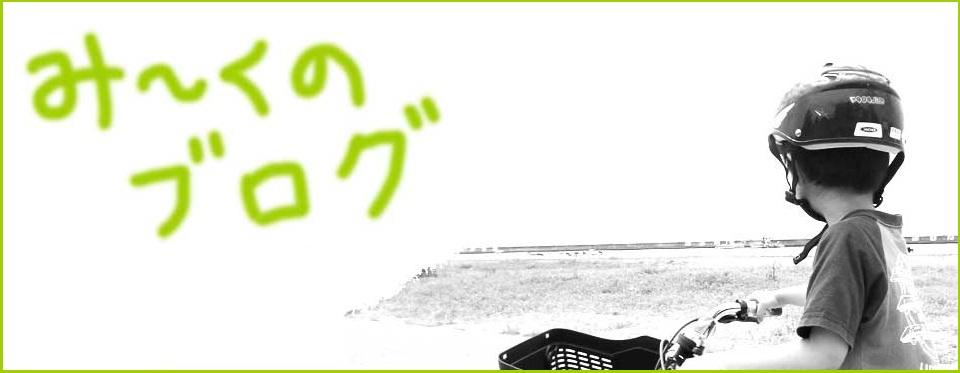 み〜くのブログ(家庭保育園・絵本・習い事・早期教育など)